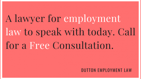 a lawyer for employment law